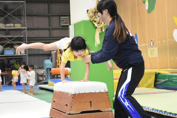 体操 クラブ 大阪 大阪体操クラブ 枚方