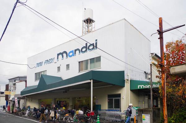 マンダイ-2011203